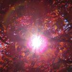 かまじいがこっそり教える、鎌倉紅葉の隠れスポット