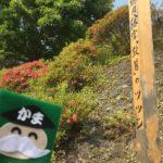 かまじい、鎌倉ゆかりの地を訪ねたのじゃ〜東北・三陸編 2/3
